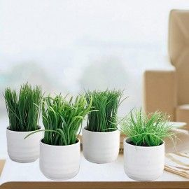 Artificial Potted Grass (Decorative)
