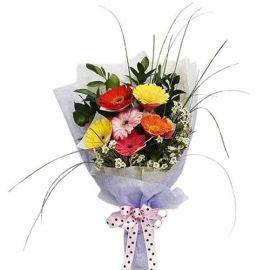6 Mixed Color Gerbera Hand Bouquet