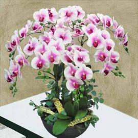 8 Artificial Phalaenopsis Orchid Table Arrangement.