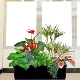 Artificial Anthurium Plants Group in Planter Box