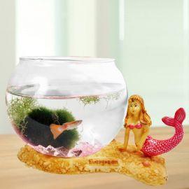 Mini Aqua Gifts ( Mermaid Series )