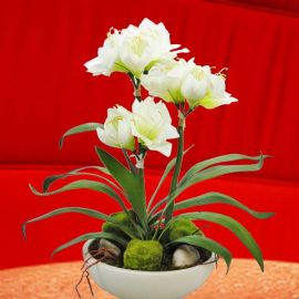 Artificial White Amaryllis Table Arrangement