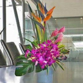 Bird of paradise & Orchid Flowers Arrangement