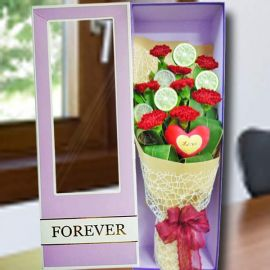 8 Red Carnations in Gift Box With Mini Heart Pillow (Love)