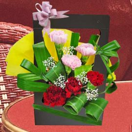 6 Mixed Carnation Arrangement Can be Hand Carry