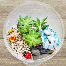 Mini indoor plants garden