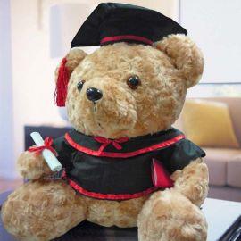 Add On, Ace Teddy Bear