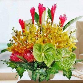 Green Anthurium & Orchids Table Arrangement