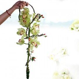 "Hand Carry ""Green Cymbidium Orchid"" bouquet"