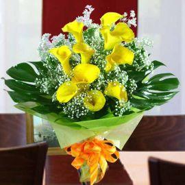 10 Cala Lily Yellow with Babybreath HandbouquetBabybreath