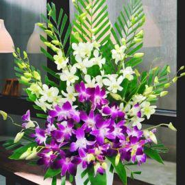 Orchids Table Arrangement