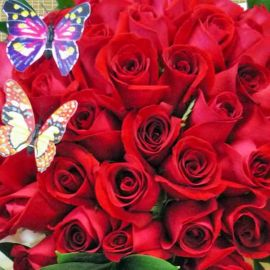 999 Roses $4900 Bouquet (Pls Call to Order)