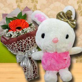 20 cm Bunny & Single Orange gerbera Bouquet