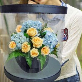Hydrangeas & Champagne Roses In Round Transparent Box