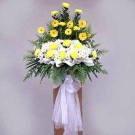 Yellow Gerbera and Pompom 6 feet arrangement
