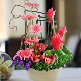 Orchids & Ginger Flowers Table Arrangement.