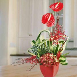 Hydrangeas & Anthurium Flowers Arrangement